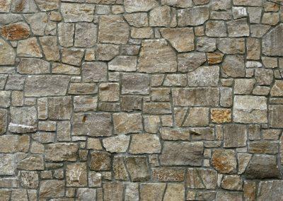 Glen Rose Limestone 0225
