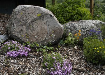 Pipestone Granite boulder 0722