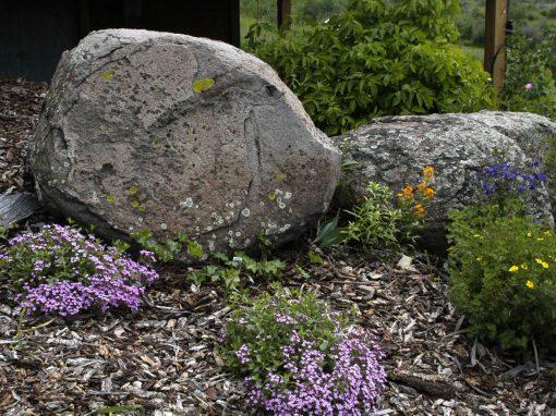 Pipestone Granite Boulders
