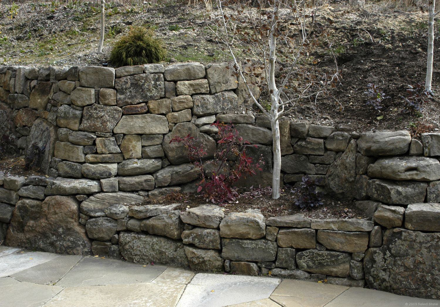 Flatwillow Moss Rock Dry Stack Select Stone